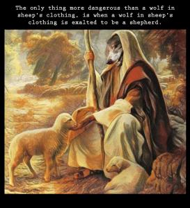 wolf-shepherd-clothing-273x300