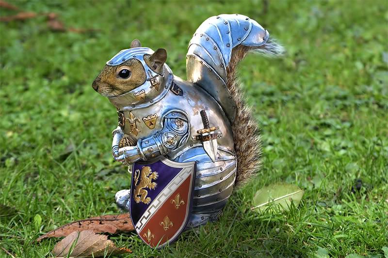 squirrel-armor